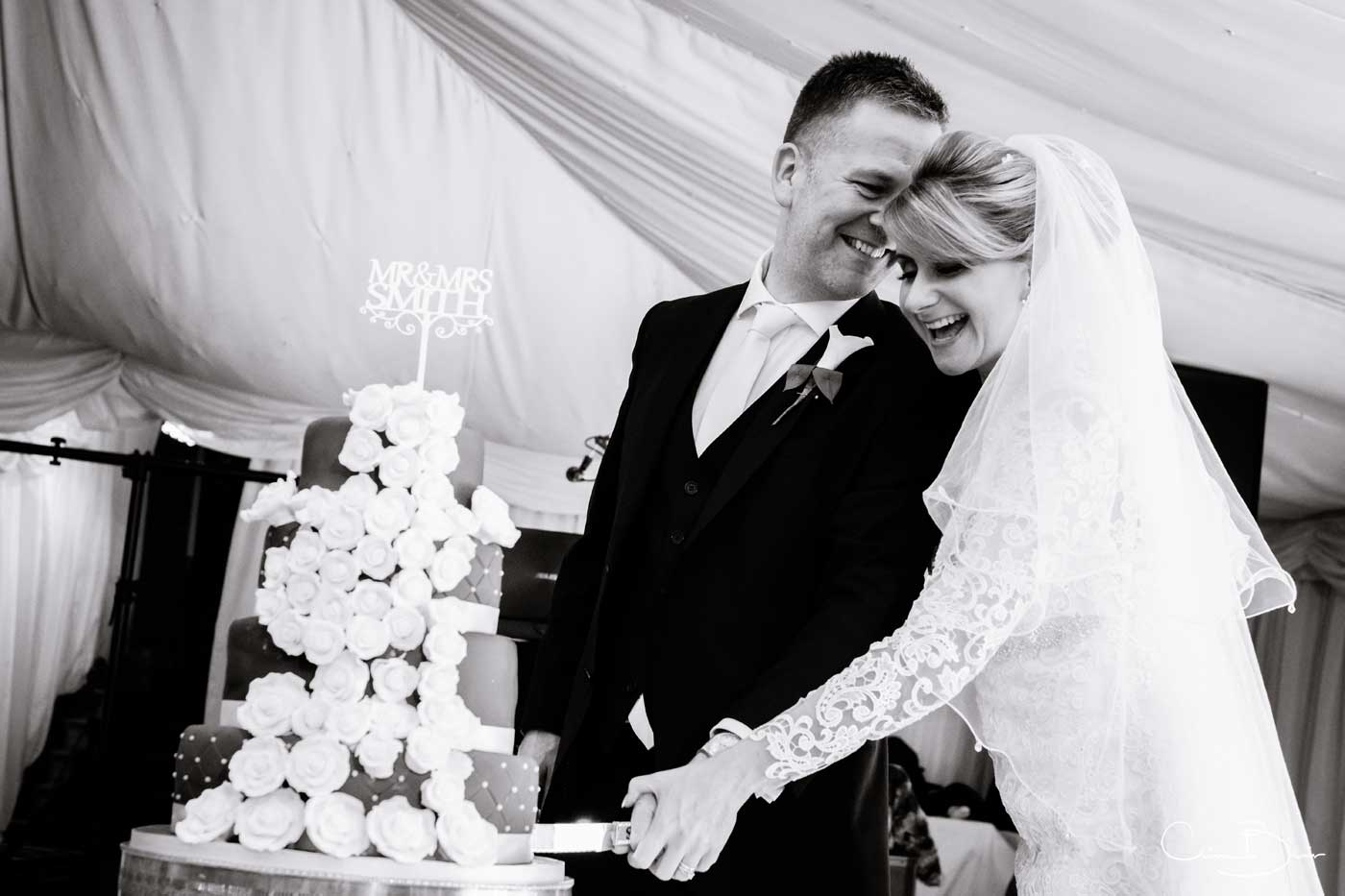 Cutting the cake at Grafton Manor as captured by Grafton Manor wedding photographer Clive Blair Photography