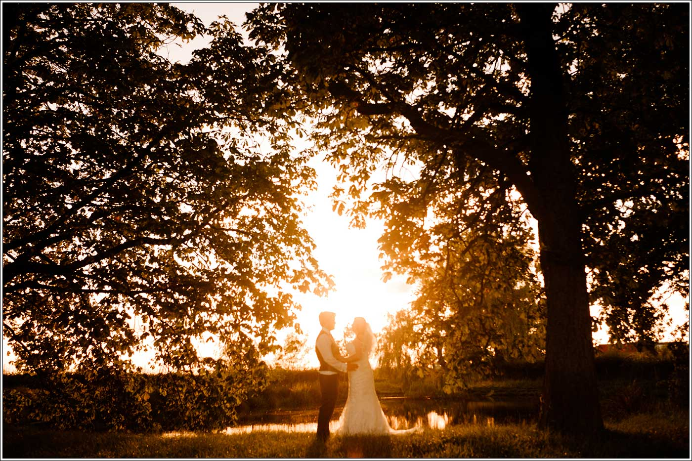 Groom and bride under a tree at Park Hall Farm during the golden hour sunlight