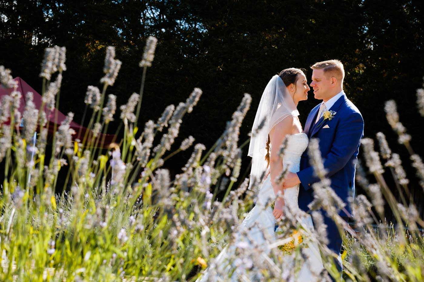 Bride and groom in grounds of Rowton Castle